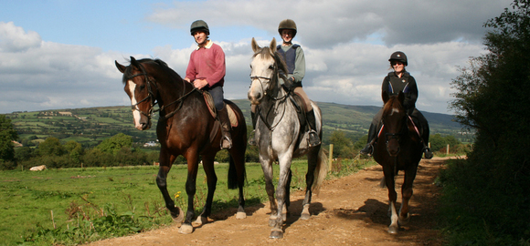 Limerick Horseriding In Limerick Travel Ireland Cheap